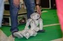 Tarde no Laboratório de Robótica